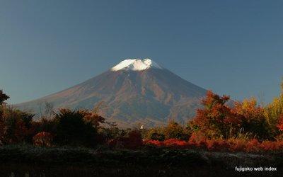 冷え込んで紅葉も鮮やか〜富士北麓