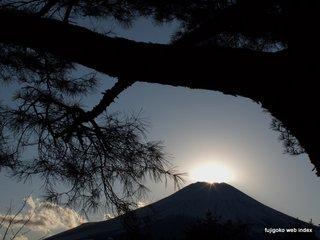 松の木とダイヤモンド富士