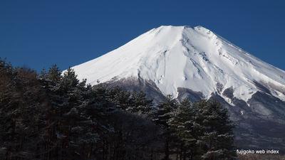雪降って富士山は綺麗に・・