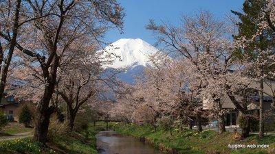 忍野村お宮橋からの富士山2013
