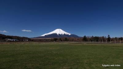 いい天気で富士山も綺麗ですな