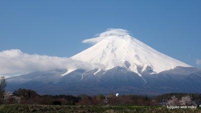 桜の季節ですが富士にはまた雪