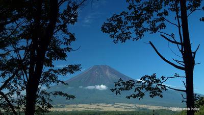 林間から富士山覗き