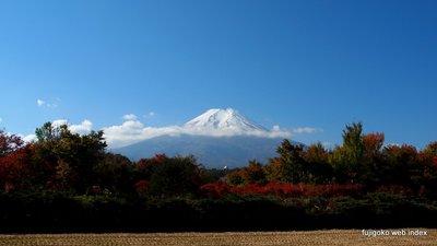 紅葉と富士山@富士吉田