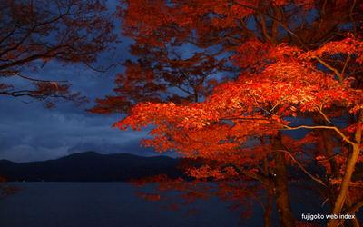 紅葉祭りのライトアップ@山中湖
