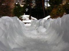 大雪でこんなに
