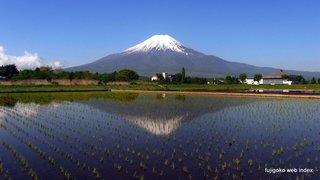 忍野の逆さ富士