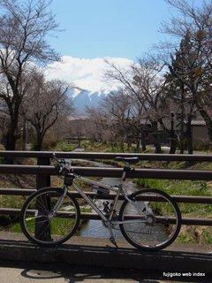 天気回復。富士山には新雪。忍野の桜はも少し先