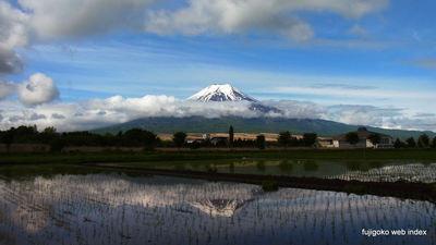 久しぶりの富士山〜忍野水田から