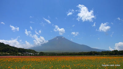 梅雨明けみたいな青い空白い雲そして富士山