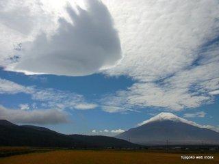 吊し雲と鰯雲と富士山と青空と稲穂@忍野