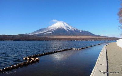 山中湖某所からの富士山